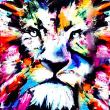 Artnight-colourful-lion-1578658467