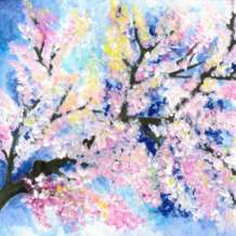 Artnight-cherry-blossoms-1581872355
