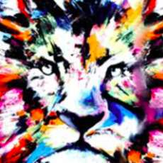 Artnight-colourful-lion-1583439251