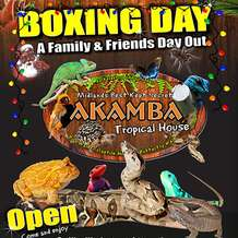Boxing-day-akamba-1482401691