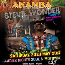 Stevie-wonder-tribute-night-1486206328