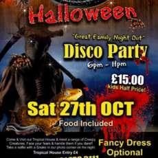 Disco-party-1532983940