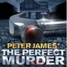 The-perfect-murder-1406192324