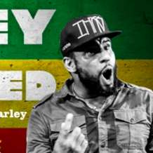 Marley-reprised-1523987928