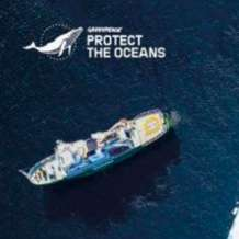 Greenpeace-ocean-experience-exhibition-1579609285