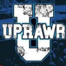 Uprawr-1523741241
