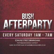 Bush-afterparty-1470426238