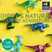 Birds-sights-and-sounds-dippy-s-natural-history-adventures-1532541594