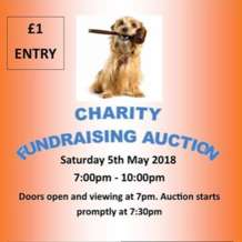 Charity-auction-1525373992
