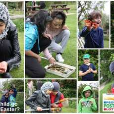 Wildlife-trust-for-birmingham-and-black-country-wild-family-fun-day-1499949047