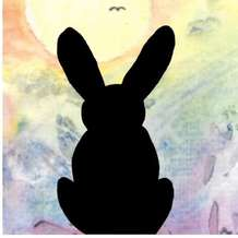 Black-rabbit-1572435102
