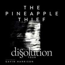 The-pineapple-thief-1540975788