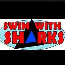 Swim-with-sharks-1491985909