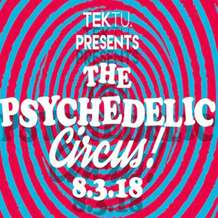 The-psychedelic-circus-1519551853