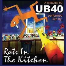 Rats-in-the-kitchen-1406058927