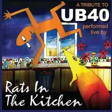 Rats-in-the-kitchen-1466799908
