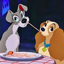 Lady-and-the-tramp-1549365437