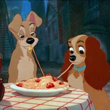 Lady-and-the-tramp-1579120207