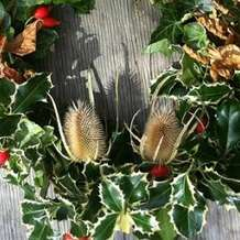 Wreath-making-fun-day-1385932704