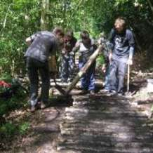 Moseley-bog-joy-s-wood-volunteer-day-1492205400