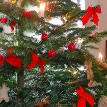 Christmas-celebrations-1460279949