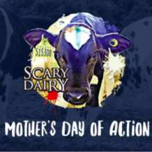 Mother-s-day-of-action-1581611395