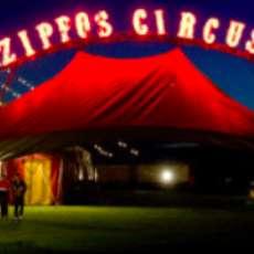 Zippos-circus-1523649341