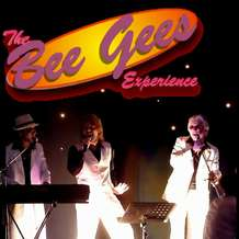 The-bee-gees-experience-1482012021