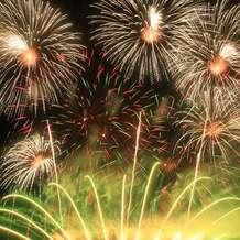 Firework-champions-1494013459