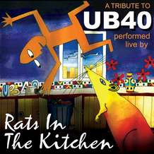 Rats-in-the-kitchen-1504257977