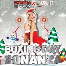The-boxing-day-bonanza-1353710311