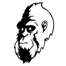 Bigfoot-jungle-vs-dnb-1555411138