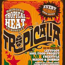 Tropicalia-launch-party-1338409436