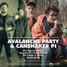 Avalanche-party-canshaker-pi-1535965978