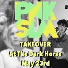 Pnkslm-takeover-1526496425