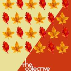 The-collective-1546505962