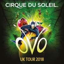 Cirque-du-soleil-ovo-1513626875