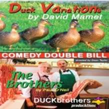 Duck-variations-and-the-brothers