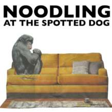 Noodling-1579028255