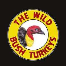 The-wild-bush-turkeys-1545425979