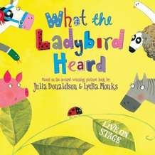 What-the-ladybird-heard-1356130019