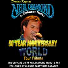 Neil-diamond-tribute-night-1503133074