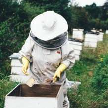 Introduction-to-beekeeping-1496524427