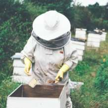 Introduction-to-beekeeping-1511713010