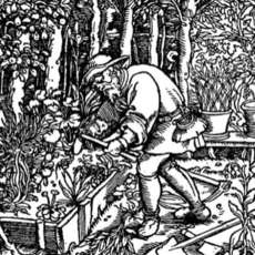 Introduction-to-garden-history-6-week-course-1523626097